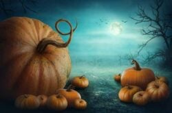 Halloween Activities & Events in Toronto & GTA for Kids: 2016