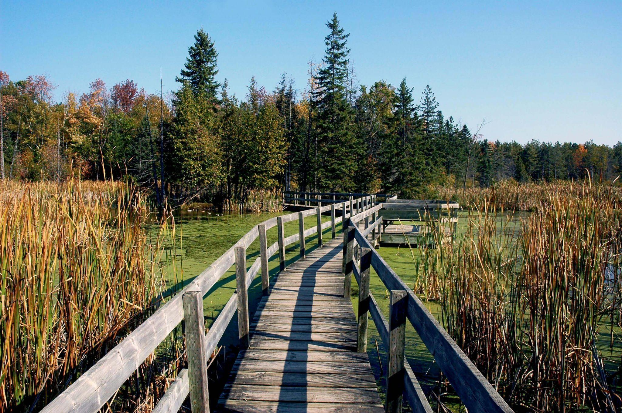 25 of the Best Hikes in and Around Ottawa