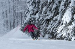 Snowboarding and Skiing in Greater Toronto Area
