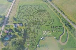 Corn Mazes and Pumpkin Patches near Halifax