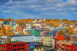 24 Ways to Discover St. John's in 24 Hours