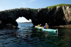 Top 10 Things to Do in Terra Nova National Park