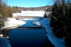 Top Things to Do in Arrowhead Provincial Park During Winter