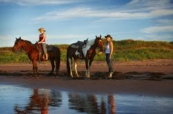 25 Ideas for a Summer Staycation on Prince Edward Island