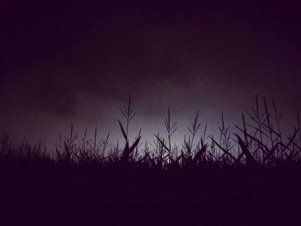 Haunted Corn Mazes & Farms in Ontario