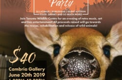 Toronto Wildlife Centre - Summer Solstice Party & Fundraiser