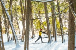 20 Fun Outdoor Winter Activities in Grey County
